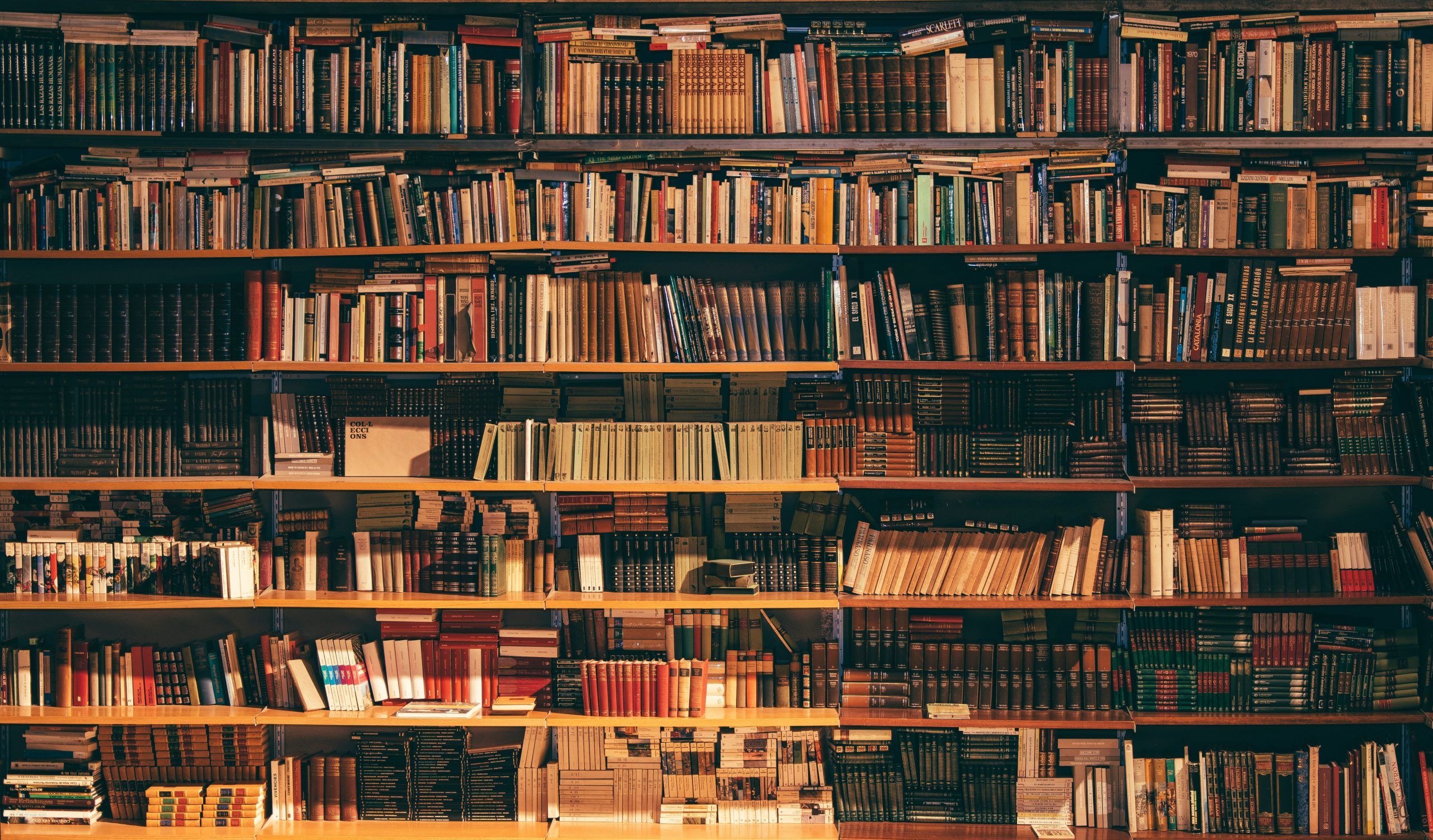 France and Italy: a shared passion of books